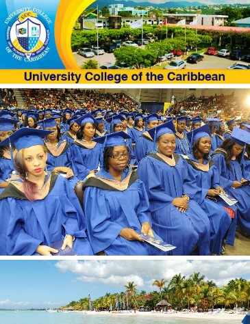 Business View Caribbean Brochure