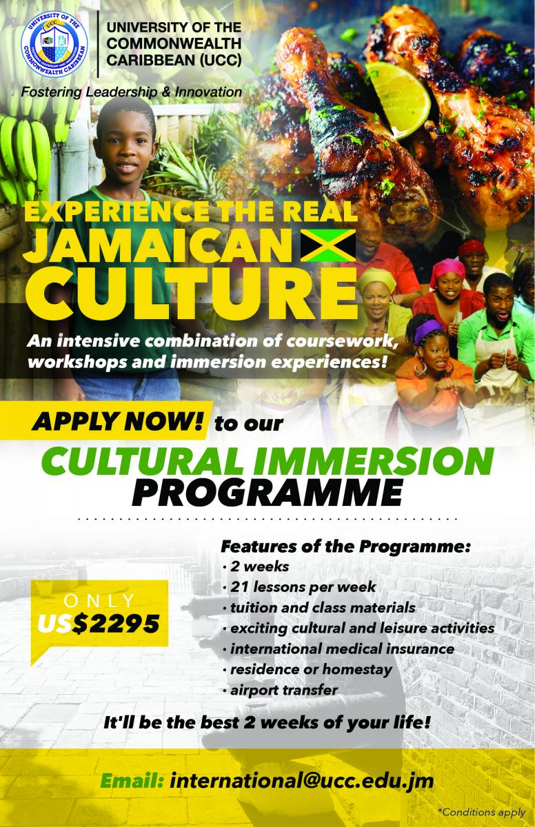 Cultural Immersion Programme at UCC